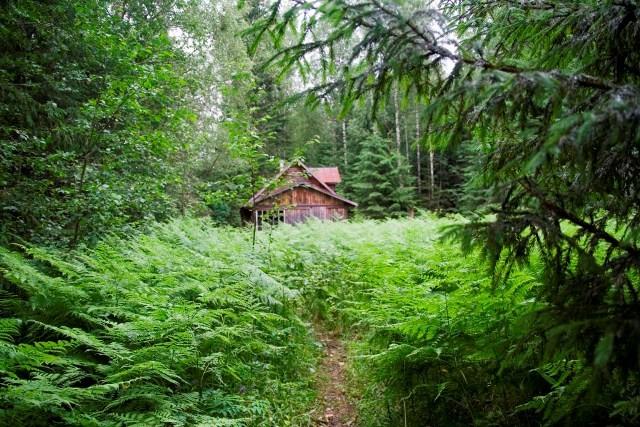 Туристов приглашают заночевать в избушках без электричества и связи в Тверской области