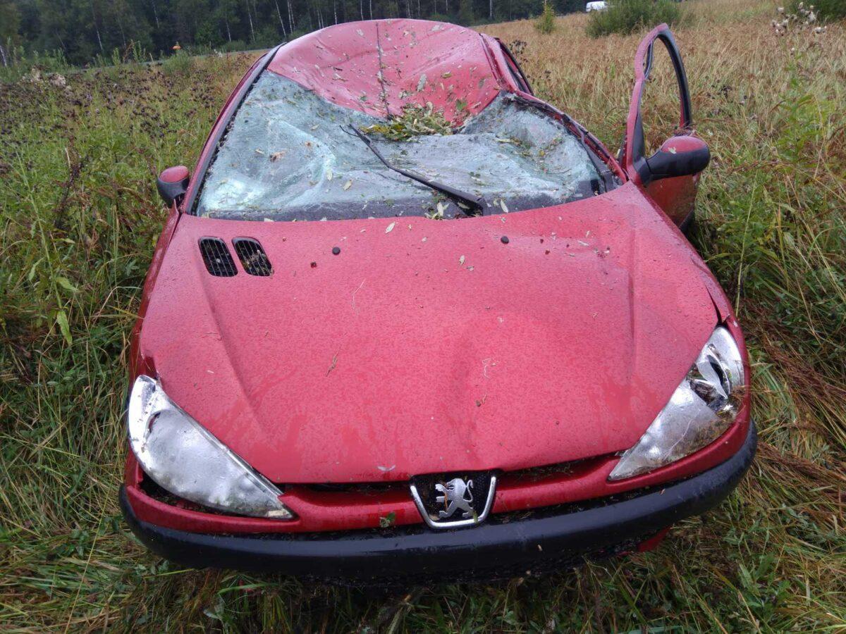 Пожилой водитель пострадал при столкновении с лосем в Тверской области