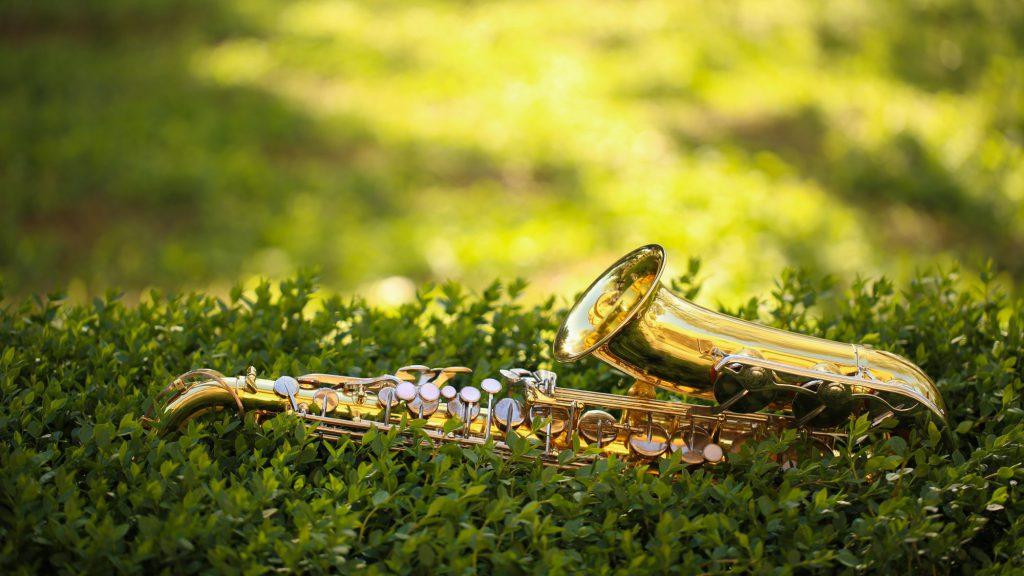 В Твери сыграют джаз под шелест листвы и пение птиц