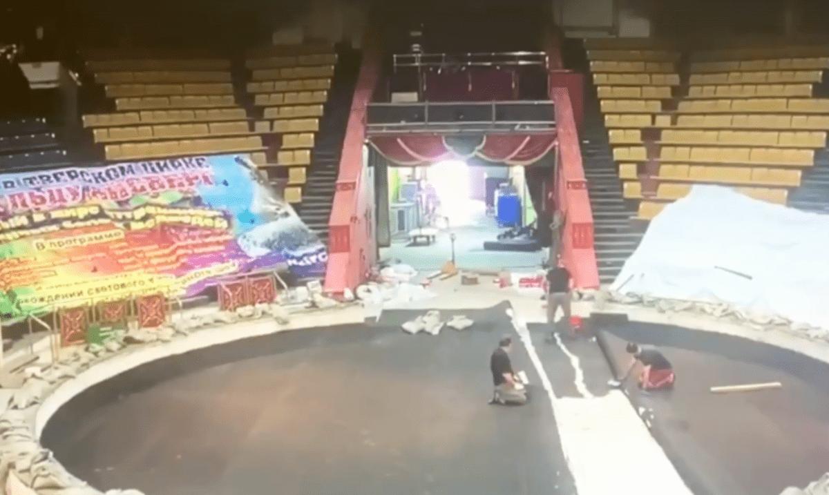 В Тверском цирке отремонтировали манеж, артисты сразу приступили к репетициям