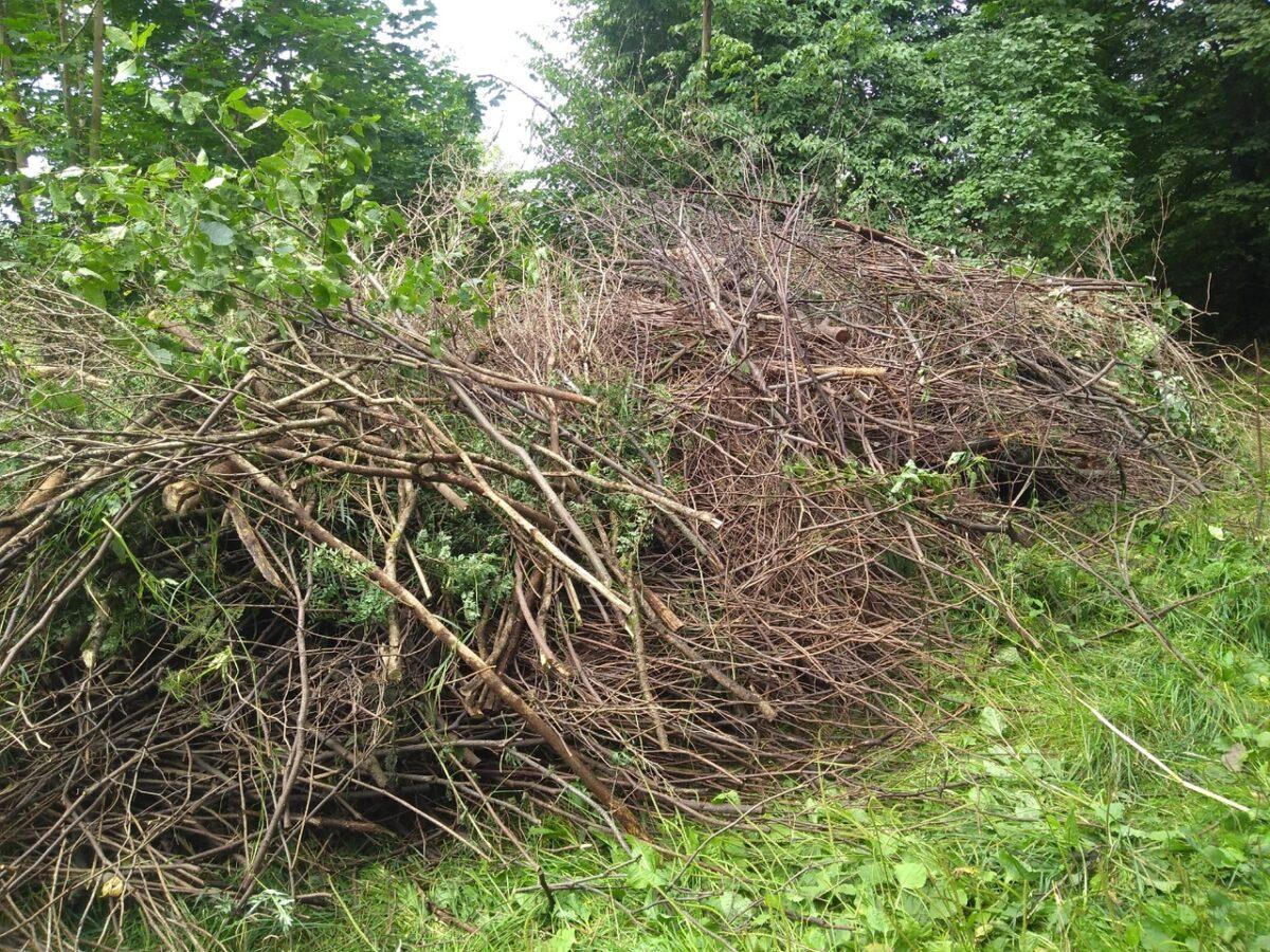 Неравнодушных жителей Твери просят помочь с вывозом мусора с Волынского кладбища