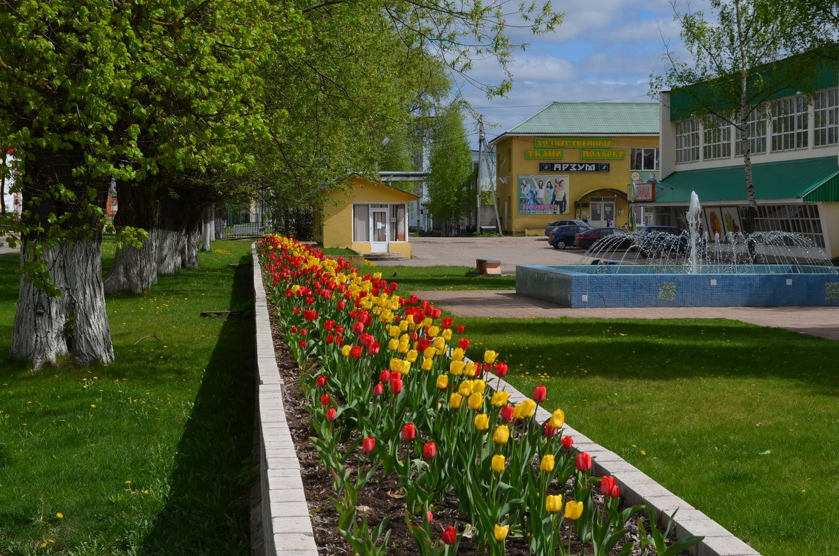 Жители западнодвинского края празднуют День города и района