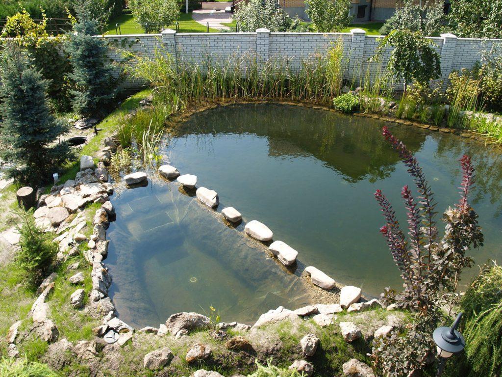 Соседи не поделили пруд в деревне Тверской области