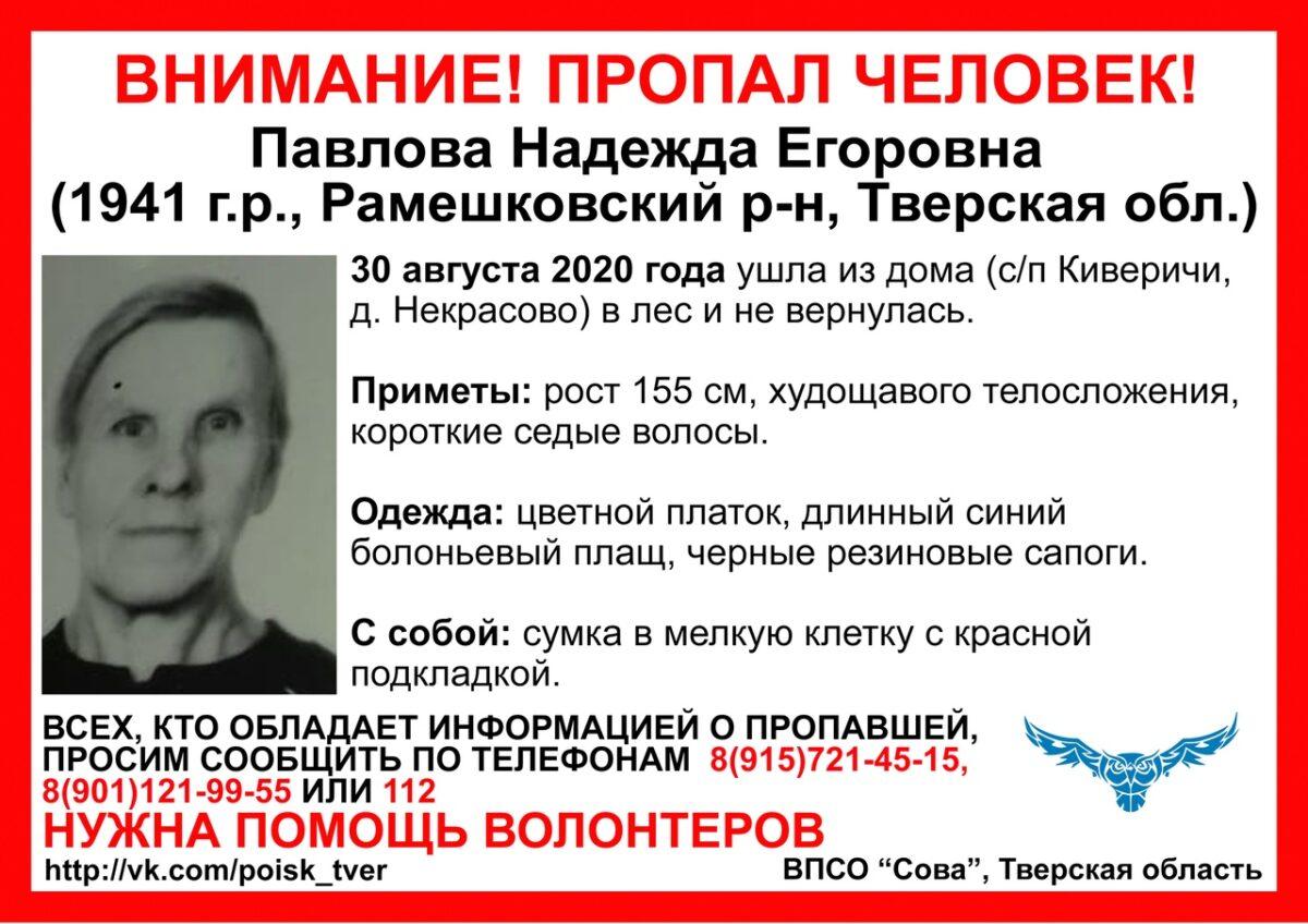 Пожилая женщина ушла в лес в Тверской области и не вернулась