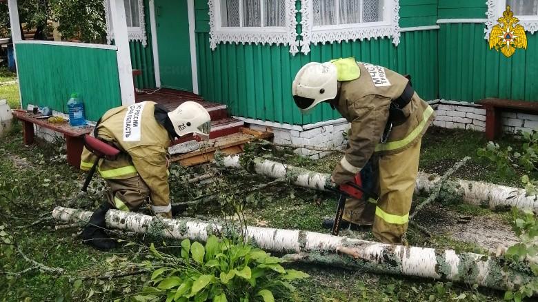 В Тверской области распиливают деревья, завалившие дороги и дворы