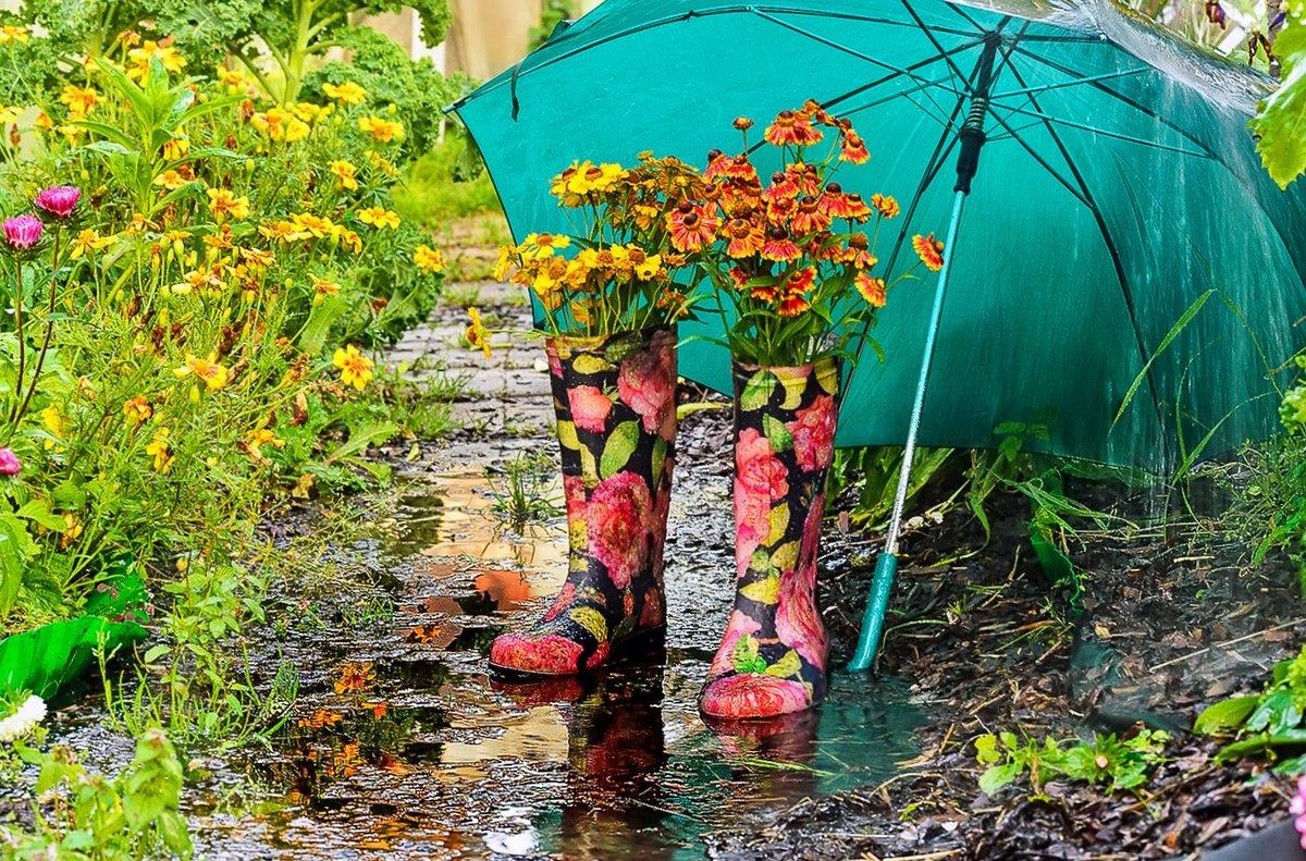 После дождей в Тверскую область вернётся лето