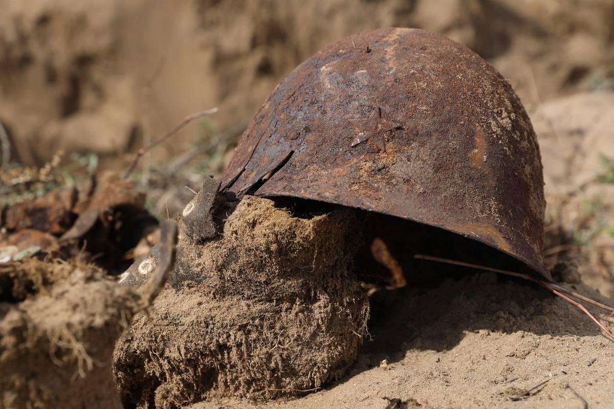 Останки 24 бойцов Красной армии нашли в Тверской области