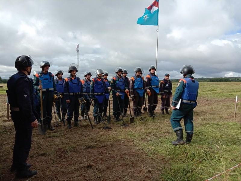 В Тверской области обезвредили больше 1000 боезарядов военных лет