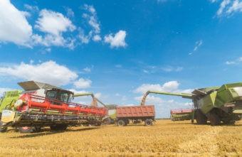 Уборка урожая в Тверской области идёт ускоренными темпами