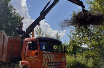 На старинном кладбище в Твери убрали 30 кубометров мусора