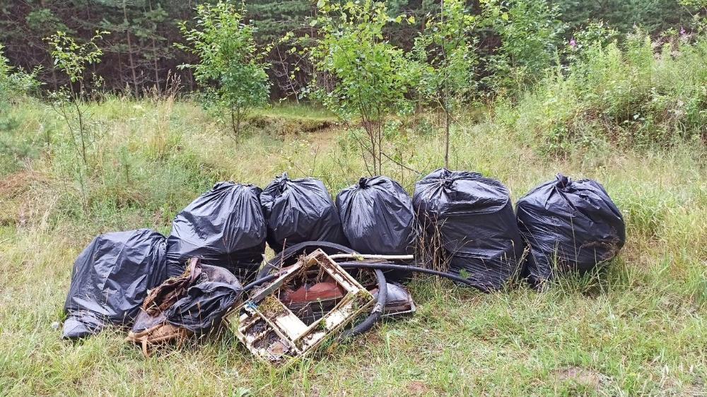 В Твери определили 30 точек сбора мусора для Всемирного дня чистоты