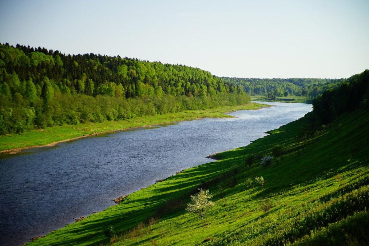 Национальный туристский форум, который проходит в Тверской области, перенесли на 2021 год