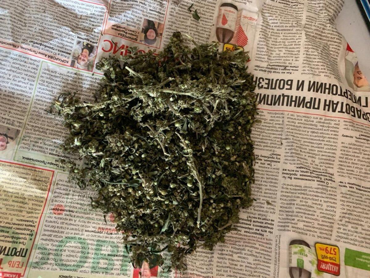 33-летний мужчина из Тверской области хранил дома коноплю и марихуану