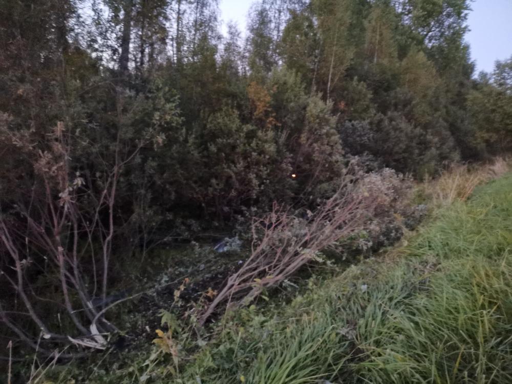 Разогнавшийся водитель оказался в зарослях в Тверской области