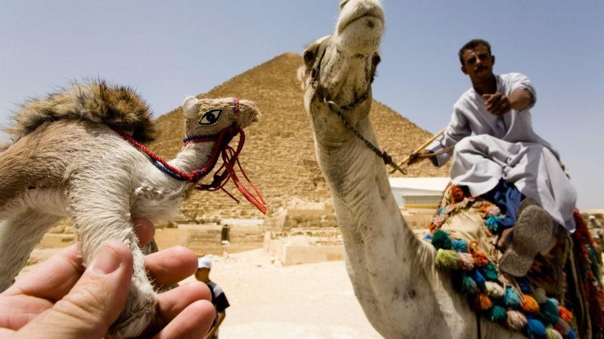 7 главных событий недели от Египта до Твери