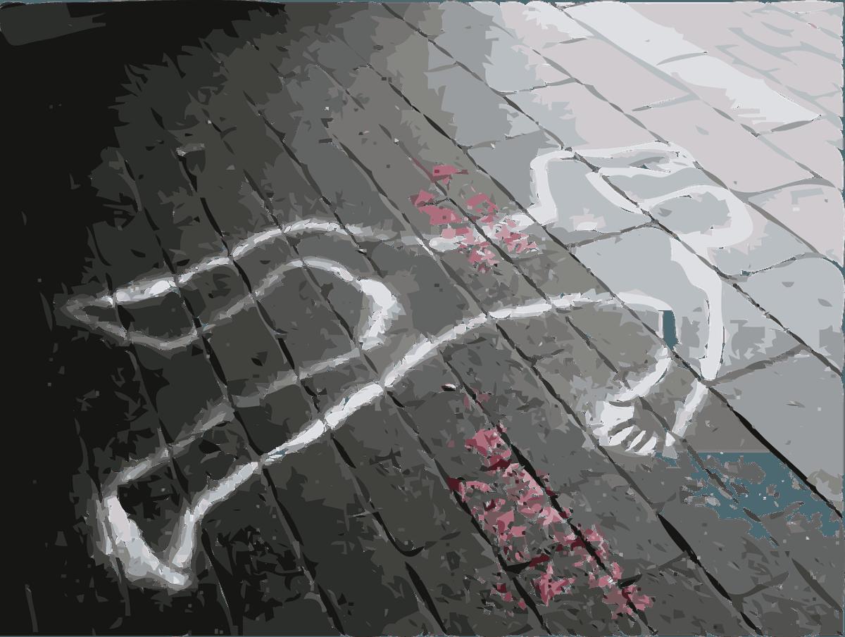 Житель Тверской области жестоко убил знакомого в своём доме