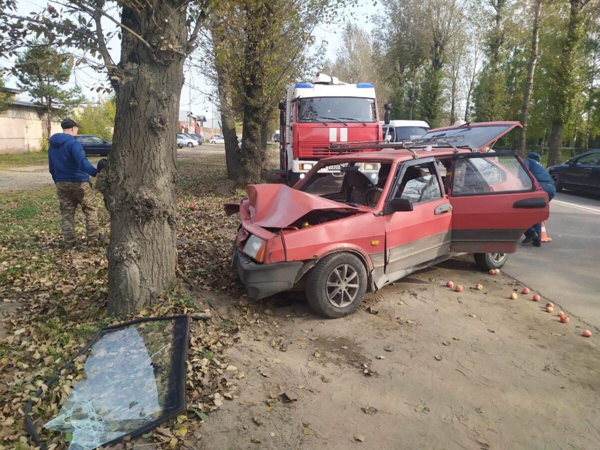 """Водитель """"девятки"""" из Твери протаранил дерево и получил сотрясение"""