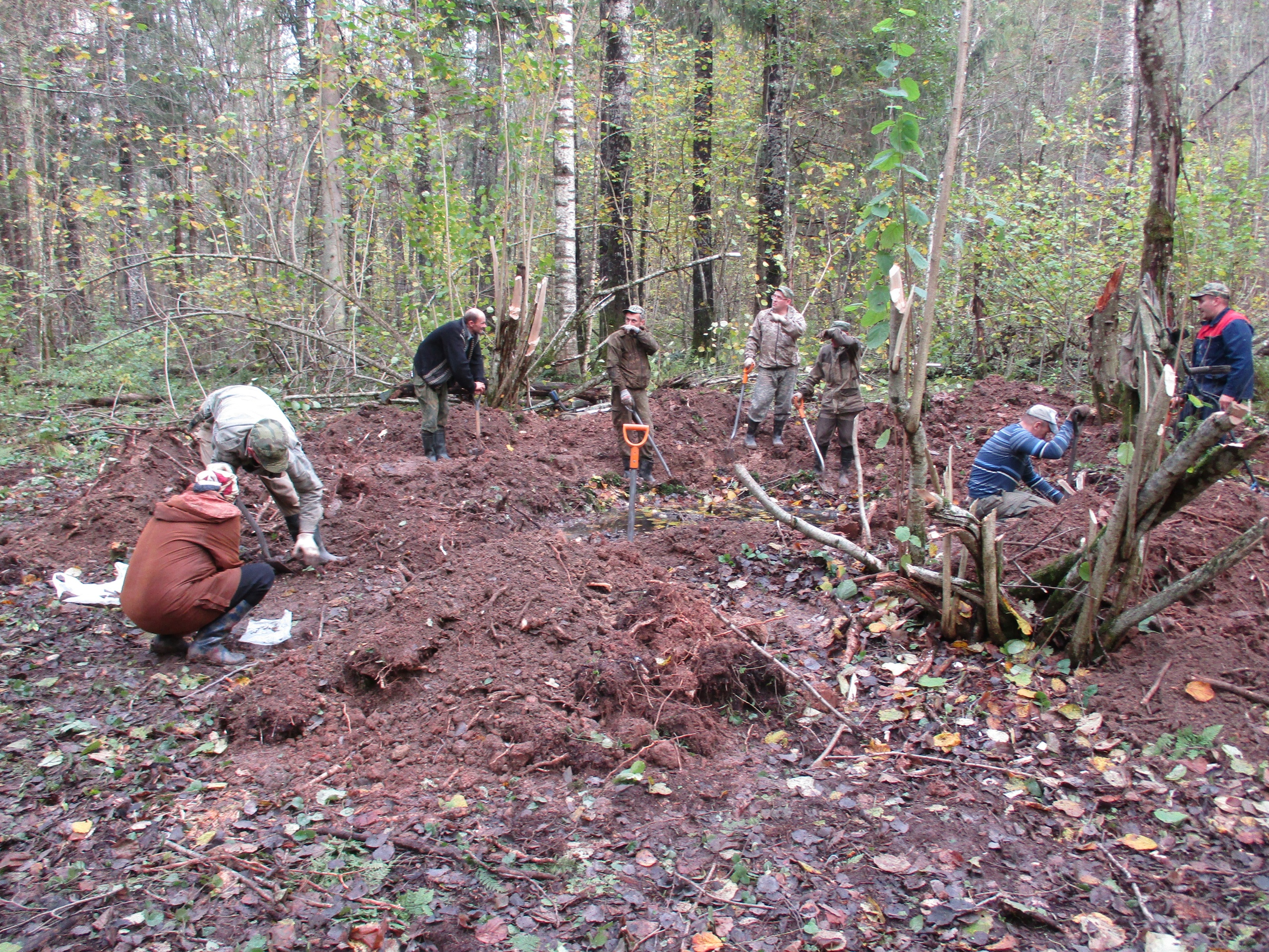 В Тверской области поисковики нашли обломки самолета и останки летчика