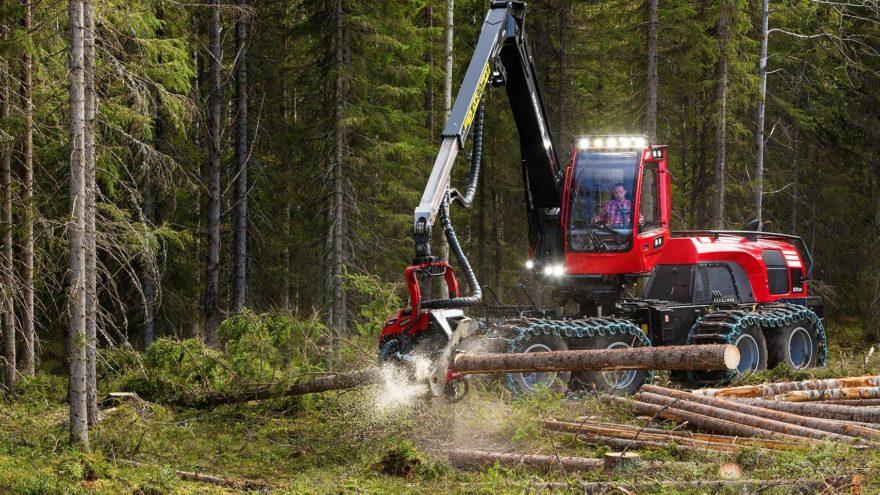 Директора лесозаготовительного предприятия в Тверской области поймали на растрате 12 миллионов рублей