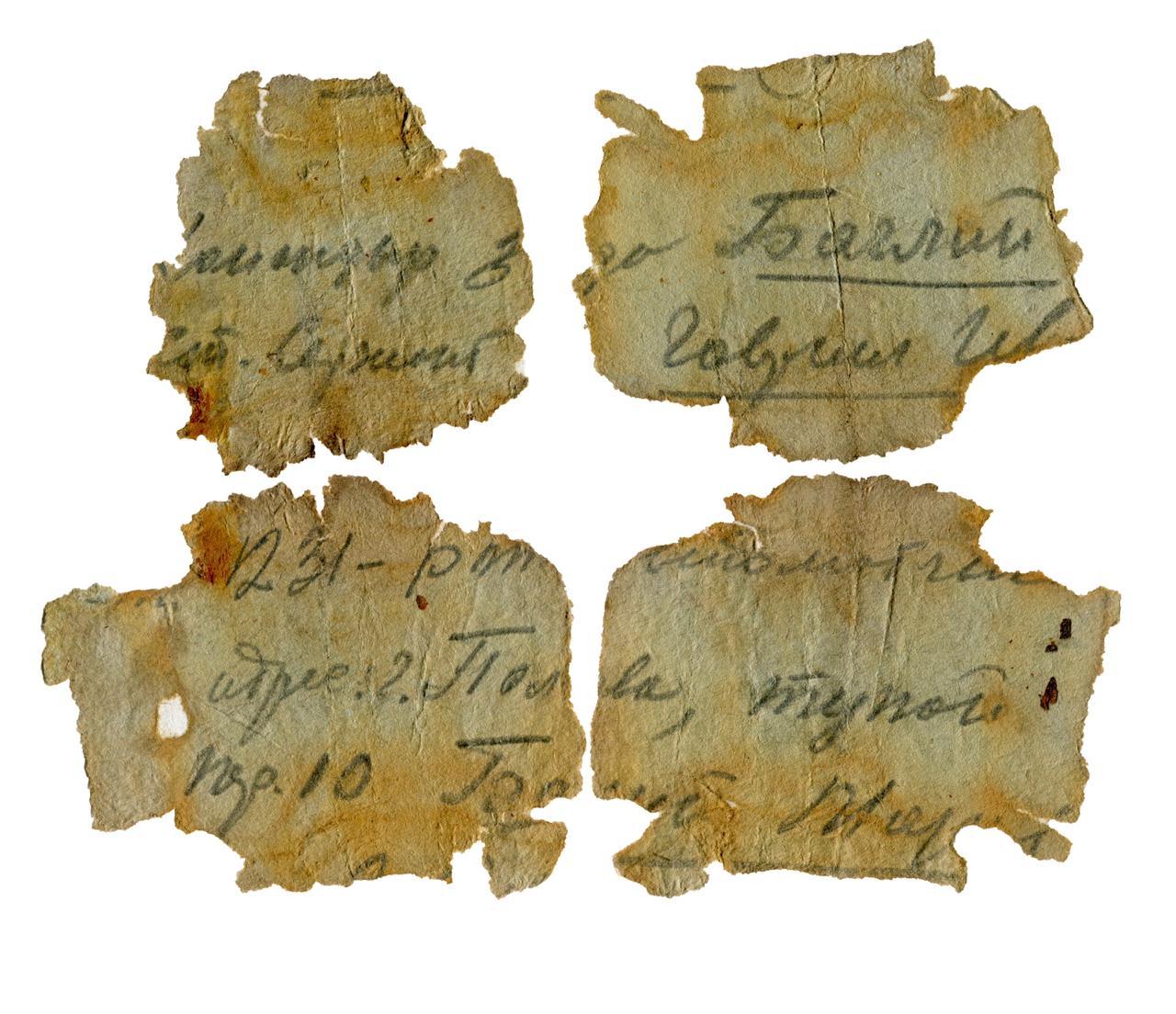 Родственников солдата, погибшего под Ржевом, нашли благодаря гильзе с запиской
