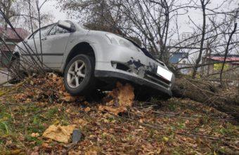 Иномарка вылетела с дороги и протаранила дерево в Тверской области