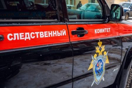 Исчезнувшую в Тверской области 10-летнюю девочку  нашли в деревенском доме
