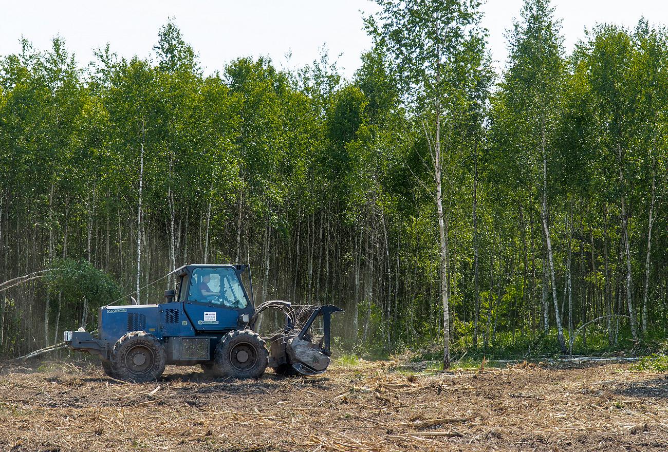 Почти 1000 гектаров пашни ввели в оборот в Тверской области