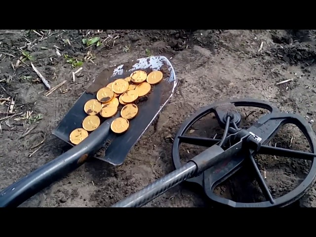 Житель Тверской области украл металлоискатель, чтобы разбогатеть