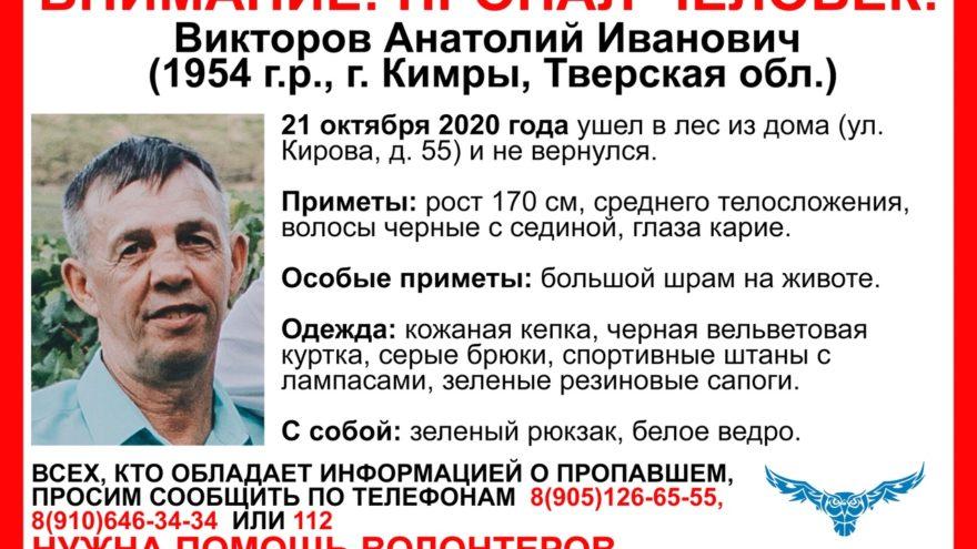 Грибник со шрамом на животе не вернулся из леса в Тверской области