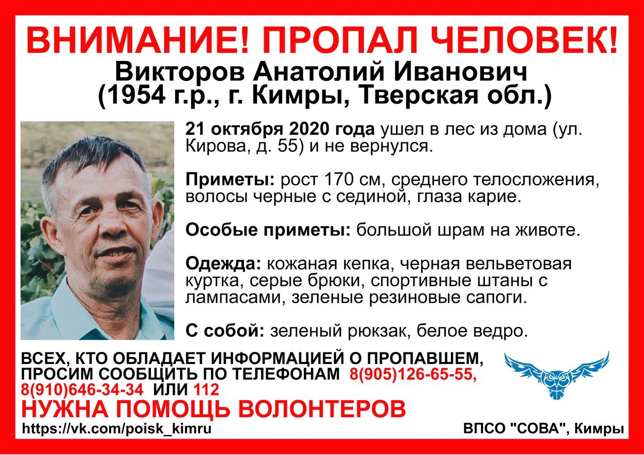 Грибник со шрамом на животе не вернулся из леса в Кимрском районе
