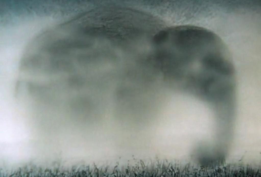 На дорогах Тверской области туман