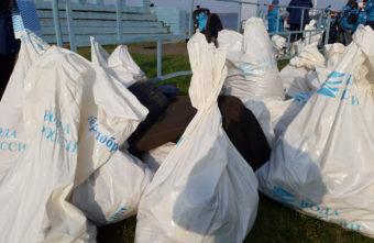 Полтонны мусора собрали с трёх километров берега Волги в Тверской области