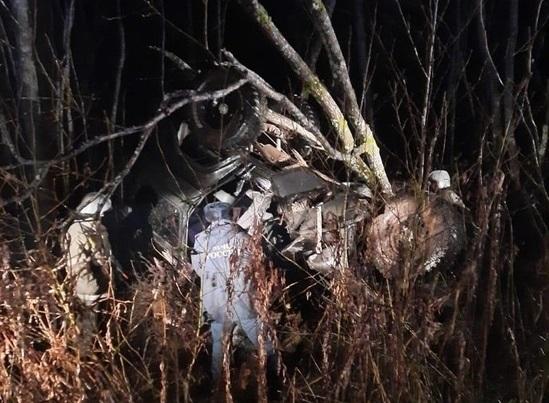 В Тверской области погиб водитель внедорожника, улетевшего в кювет и протаранившего дерево