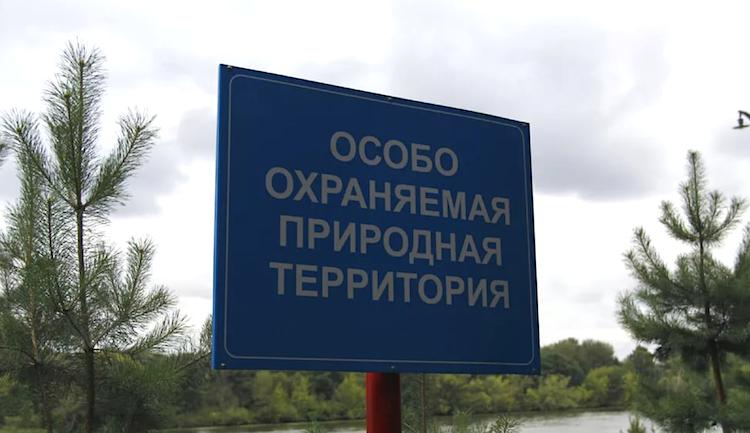 Складировать химикаты и рубить лес запретили ещё в 43 местах Тверской области