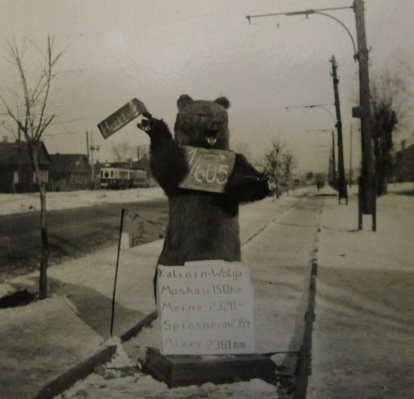 Немцы, захватив Калинин, сделали из чучела медведя уличный указатель