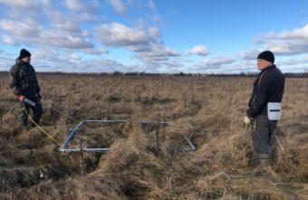 Поисковики нашли под Лихославлем обломки рухнувшего самолета и установили имена летчиков
