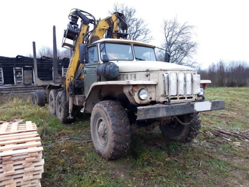 Житель Тверской области незаконно рубил деревья и вывозил на пилораму