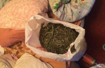 Наркотики для себя не помогут жителю Тверской области избежать тюрьмы