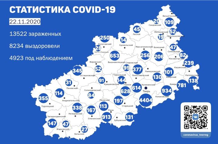 Коронавирус в Тверской области 22 ноября: ещё 196 случаев заражения