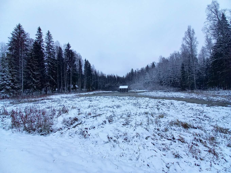 В тверской заповедник зима пришла точно по расписанию