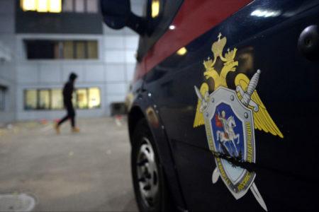 Пока следователи искали в Твери пропавшую девочку, она вернулась домой