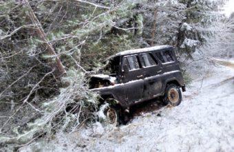 Парень на «УАЗе» не успел объехать дерево в Тверской области