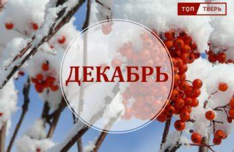 Сюрпризы декабря: топ законов, которые нужно знать жителям Тверской области