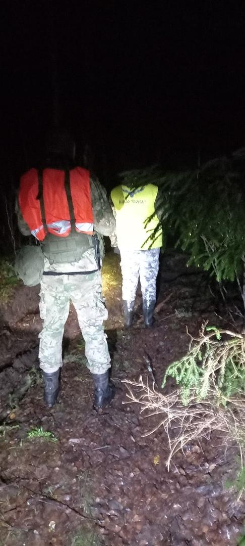 Тверские волонтеры вывели с ночного болота потерявшуюся бабушку