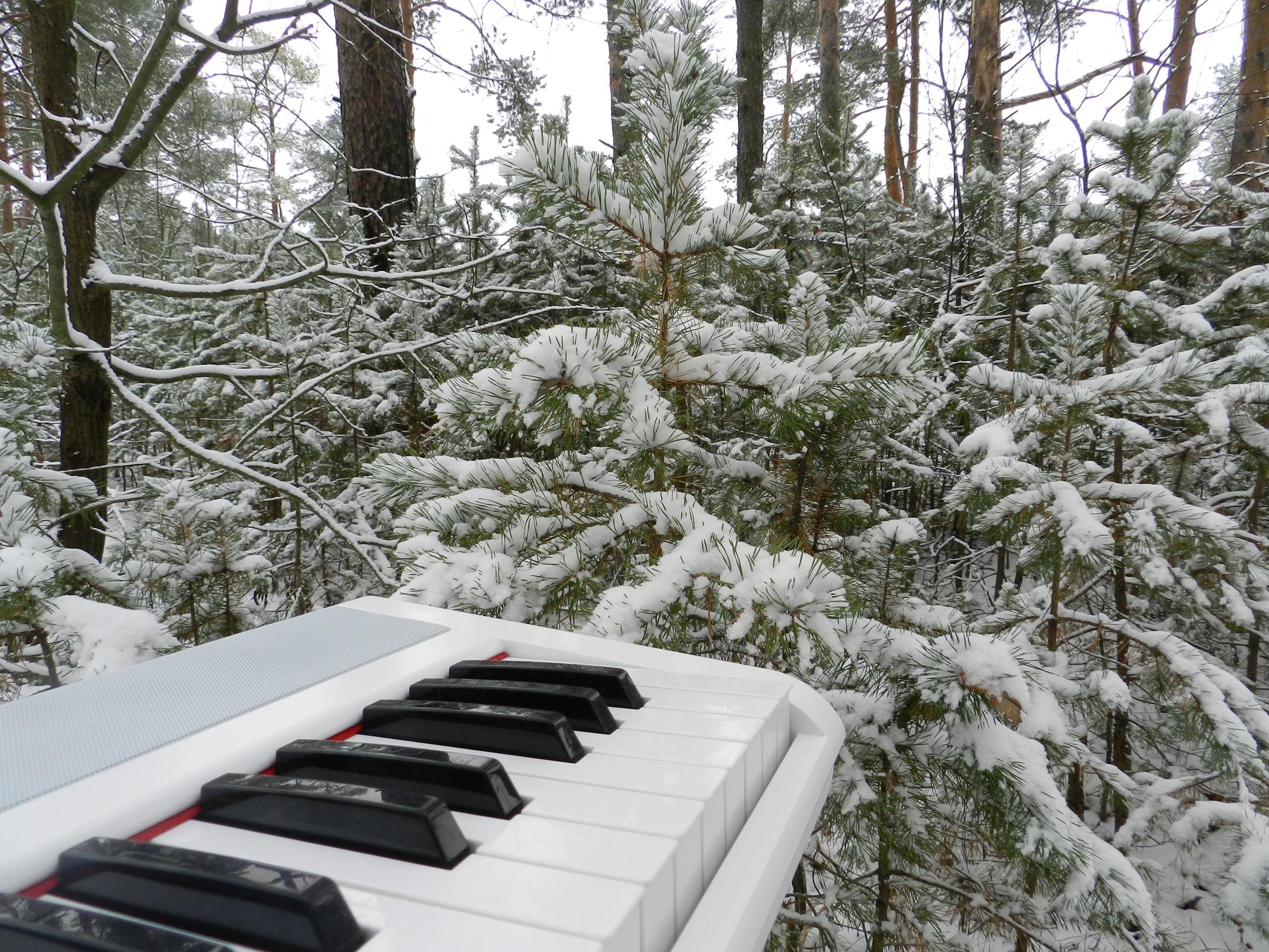 В Тверской области состоялась премьера снежного видео