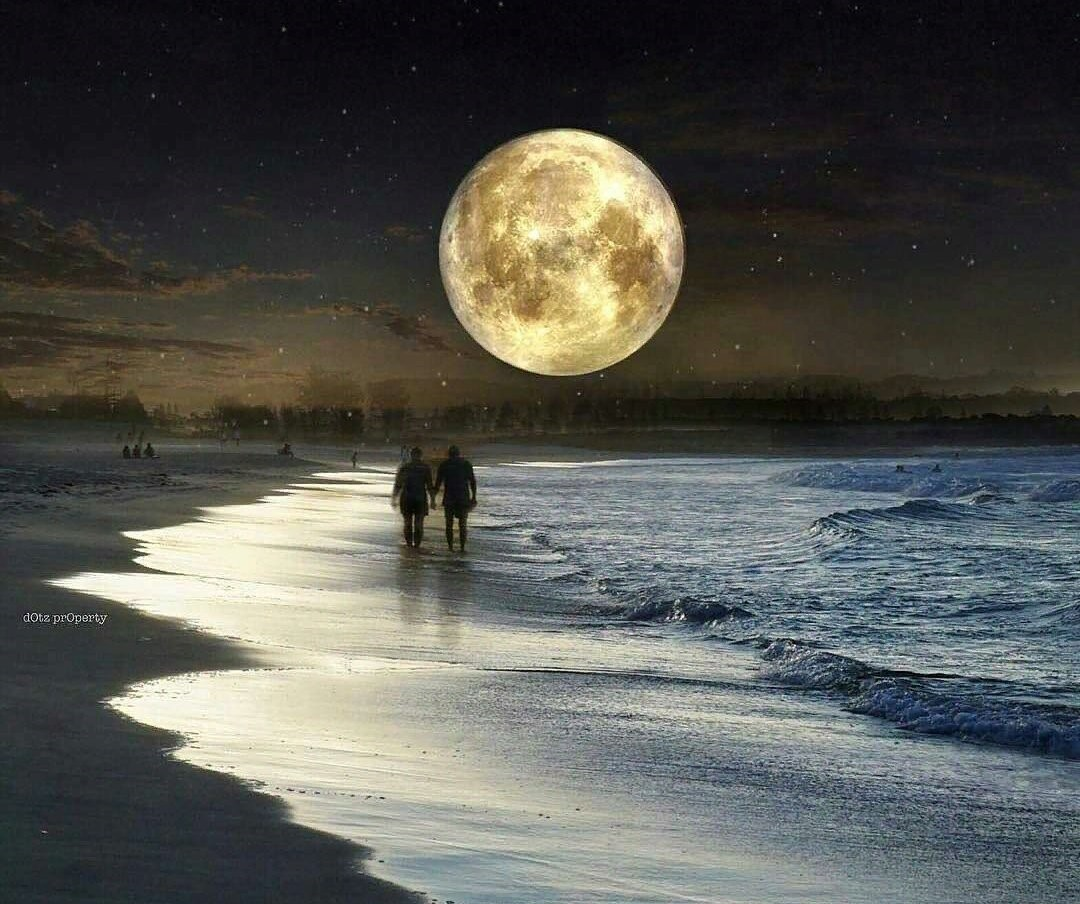 Жителей и гостей Твери приглашают прогуляться по Луне