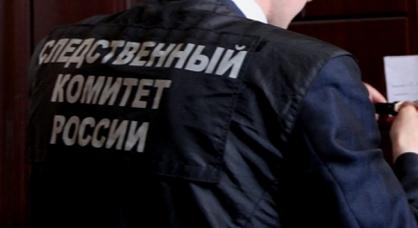 Девочка совершила кражу в Тверской области