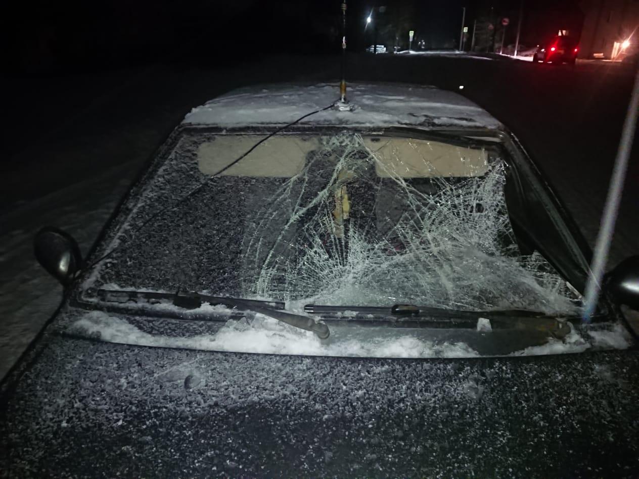 Мама с 14-летней дочкой попали под колёса машины в Тверской области