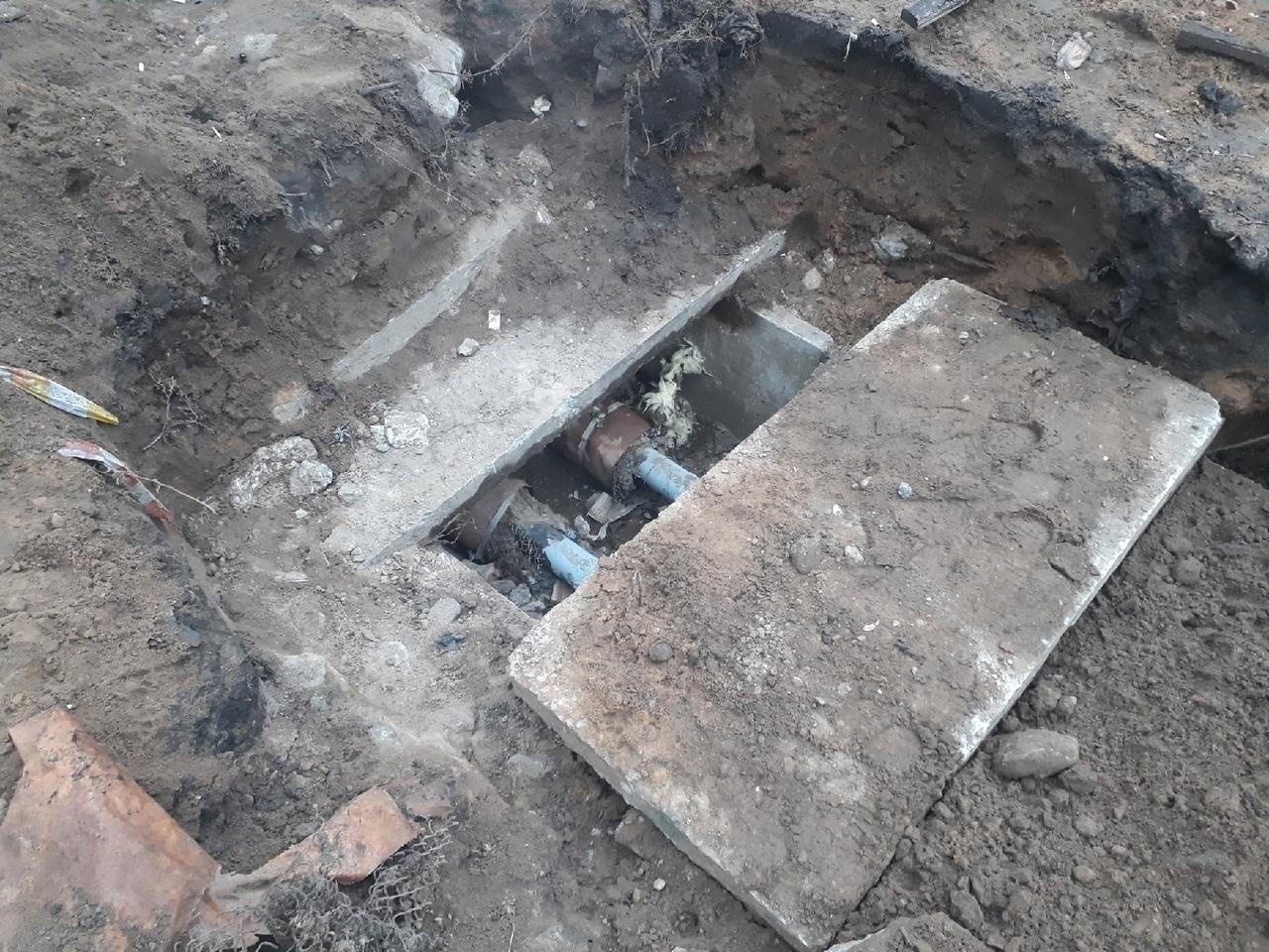 Теплотрассу в Твери не закопают, пока не достанут из неё котят