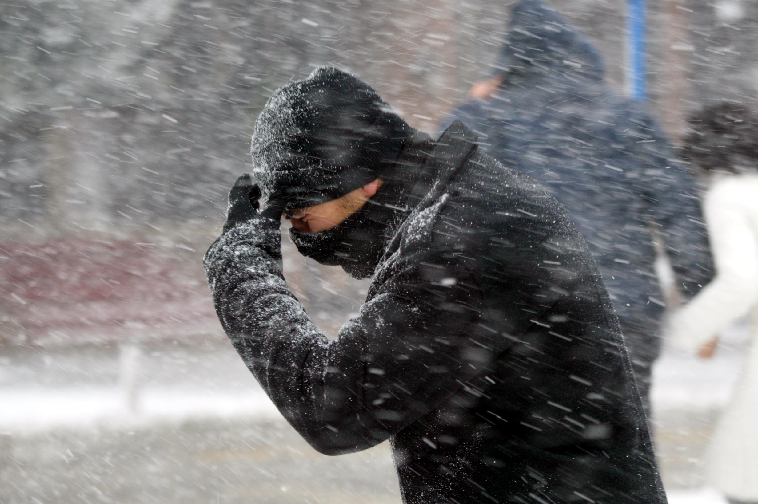Жителей Тверской области предупредили об очень сильном ветре
